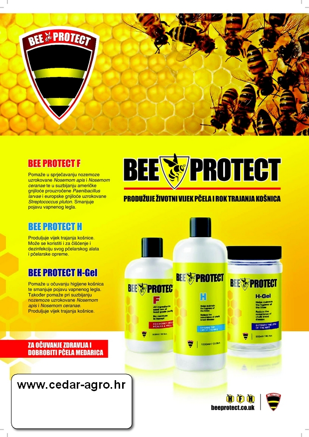 ws bee protect f 01