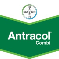 Antracol_Combi_W_5584173431b4f